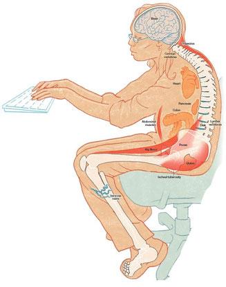 Comment Soigner Une Inflammation Du Psoas : comment, soigner, inflammation, psoas, MUSCLE, PSOAS:, MAËVA, RUPÉ, OSTÉOPATHE
