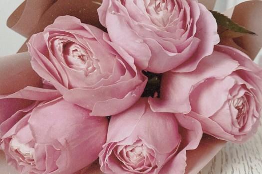 Красивые розовые розы и цитаты про весну