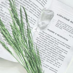 Цитаты о природе из «Алмазного языка» К.Г. Паустовского