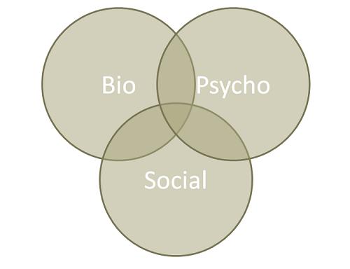 Cercles représentants l'interaction des éléments Bio-Psycho-sociaux influençant l'origine de la schizophrénie