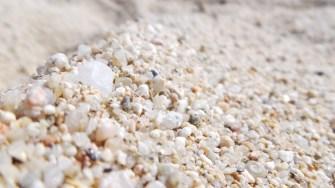 Macro de arena