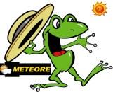 le temps vu par Météore la grenouille des potes âgés