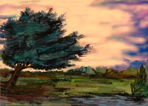 arbre au fusain21