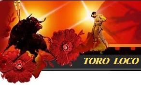 logo toroloco