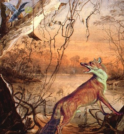 renard et corbeau