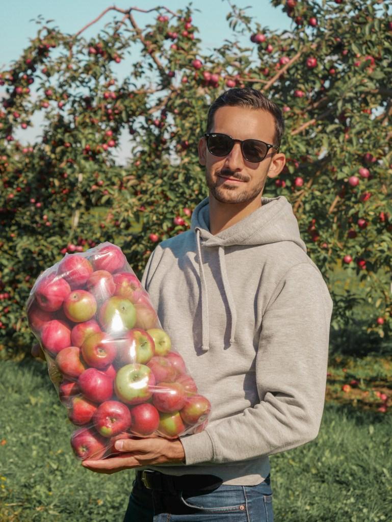Pommes Verger Champêtre