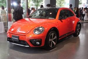 beetle_13