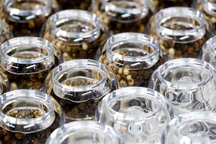 透明瓶罐的上蓋灌膠香料