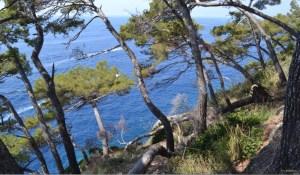 Quale futuro per le aree protette italiane? Alla Camera la legge sui Parchi che non piace ad ambientalisti ed esperti CorriereAl 1