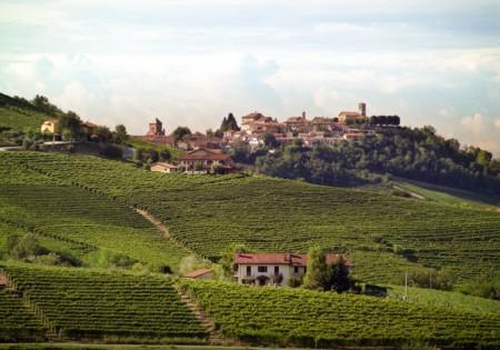 Il vino unico di Verduno [Abbecedario del gusto] CorriereAl 1
