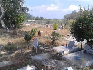 Cimitero degli animali completamente risistemato dai volontari di Radio Bbsi CorriereAl 1