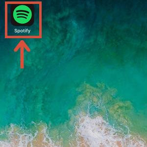 Spotifyのアプリを選択