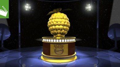 Photo of Film-News: Die Nominierungen für die Goldene Himbeere 2016 – Pixels und Fifty Shades of Grey haben gute Chancen