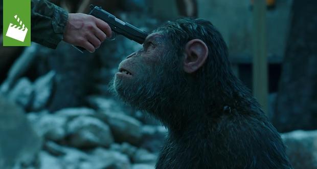 Durchgerüttelt: Planet der Affen: Survival - Der erste 4DX-Film in ...