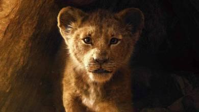 Bild von Der König der Löwen: Der neue Trailer ist da (inkl. Timon & Pumbaa!)