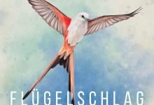 Photo of Brettspiel-Review: Flügelschlag