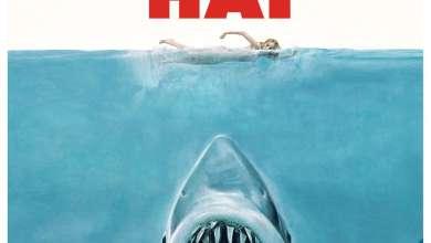 Bild von Brettspiel-Review: Der weisse Hai