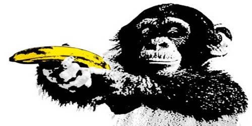 """Résultat de recherche d'images pour """"monnaie de singe"""""""
