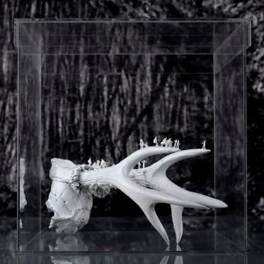 Worlds of Bones, Horns