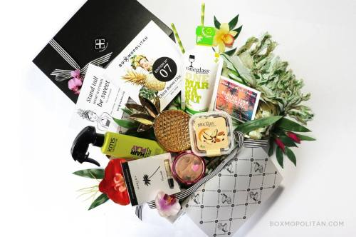 Boxmopolitan | Magazin Freshbox