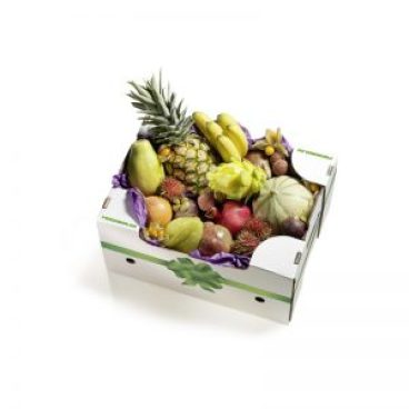 PurpleBox_Geschenk_Magazin_Freshbox
