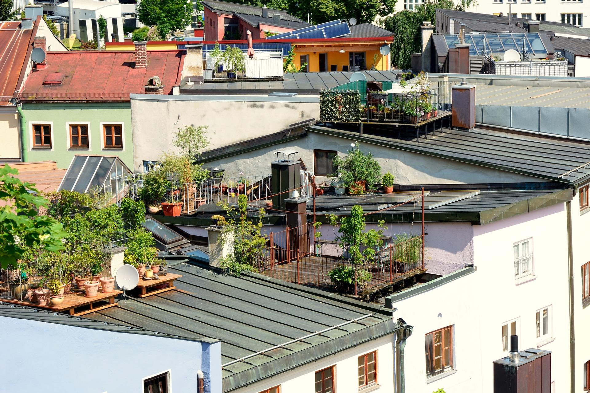 Urban Gardening: Der Gartentrend 2019