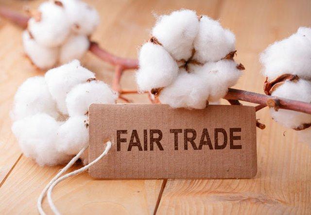 Bio-Baumwolle: Auf was du achten solltest!