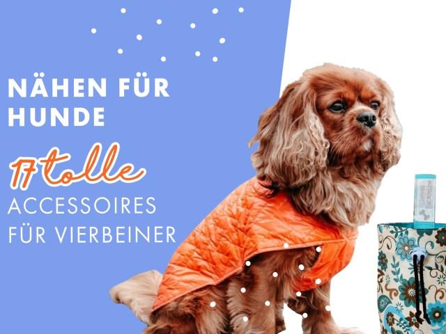 Nähen für Hunde – 17 tolle Accessoires für Vierbeiner