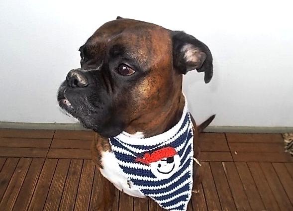 Makerist-Naehen-fuer-Hunde-17-tolle-Accessoires-fuer-Vierbeiner-Hundehalstuch-gehaekelt-Pirat