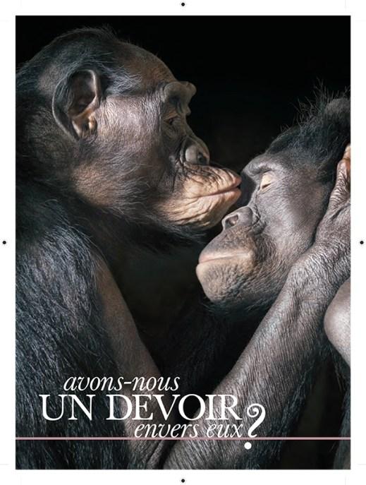 """""""Avons-nous un devoir envers eux?"""" (ELLE Quebec)"""