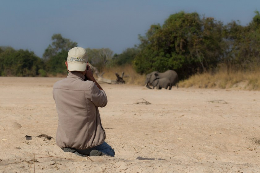 © Photographing elephants in South Luangwa © Edward Selfe