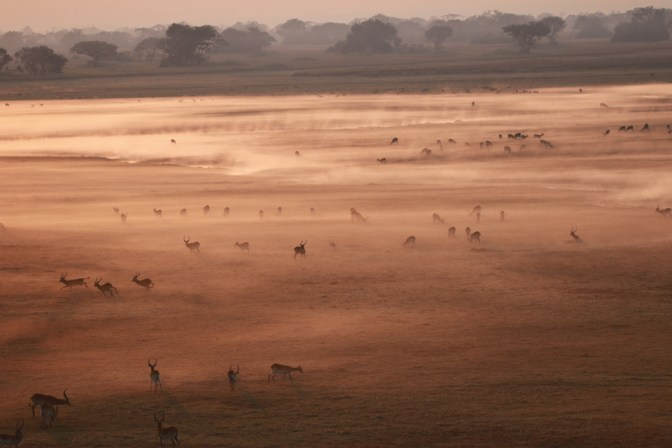 © Namib Sky Balloon Safaris