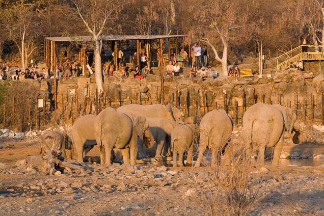 Halali-waterhole-©-Namibian-Wildlife-Resorts
