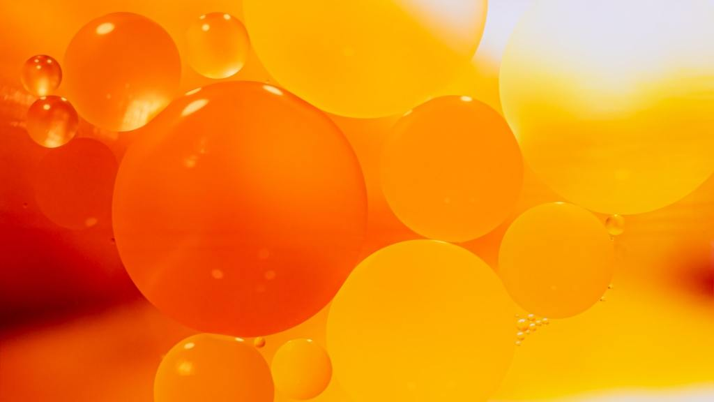 Yellow spheres represent visceral fat stores