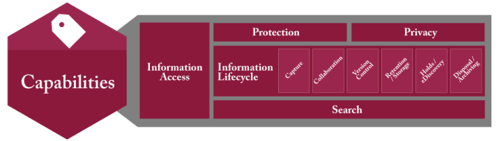 Information Governance Capabilities