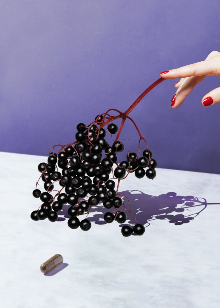 Elderberry can help your body prepare for cold and flu season