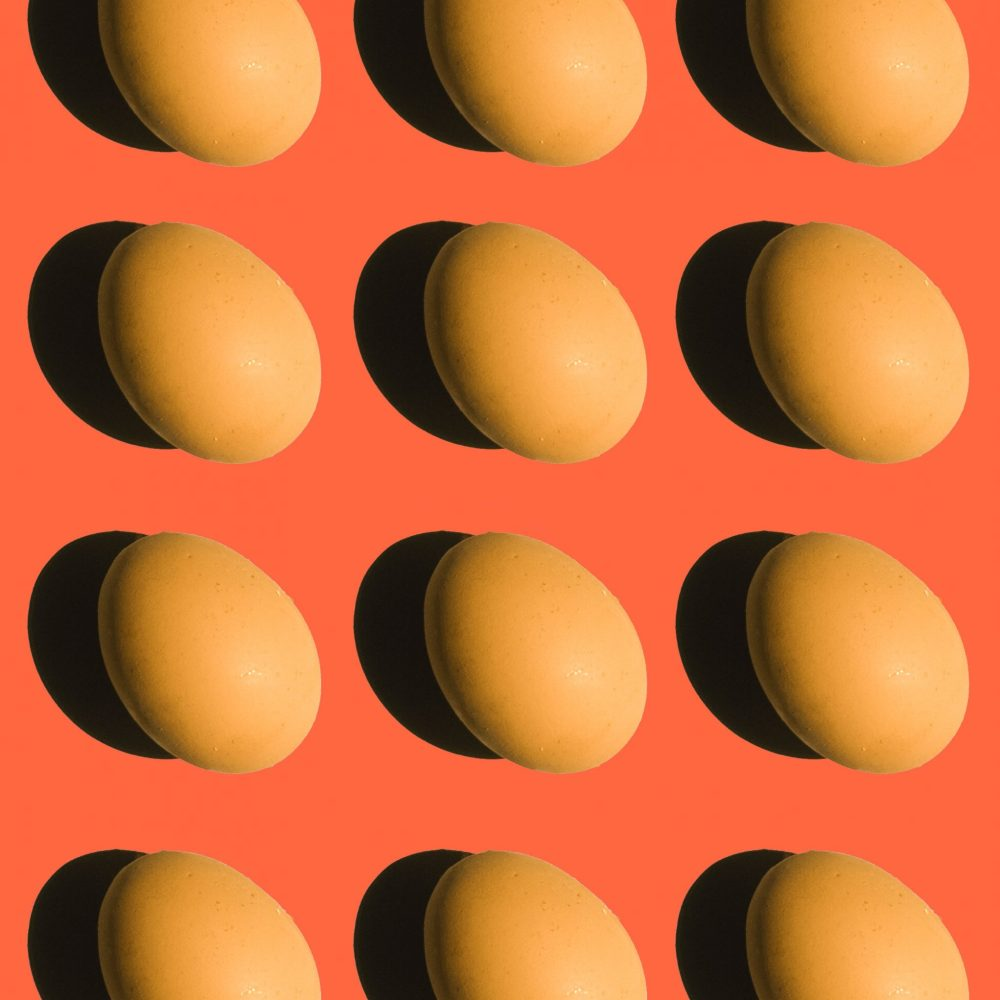 eggs on an orange background