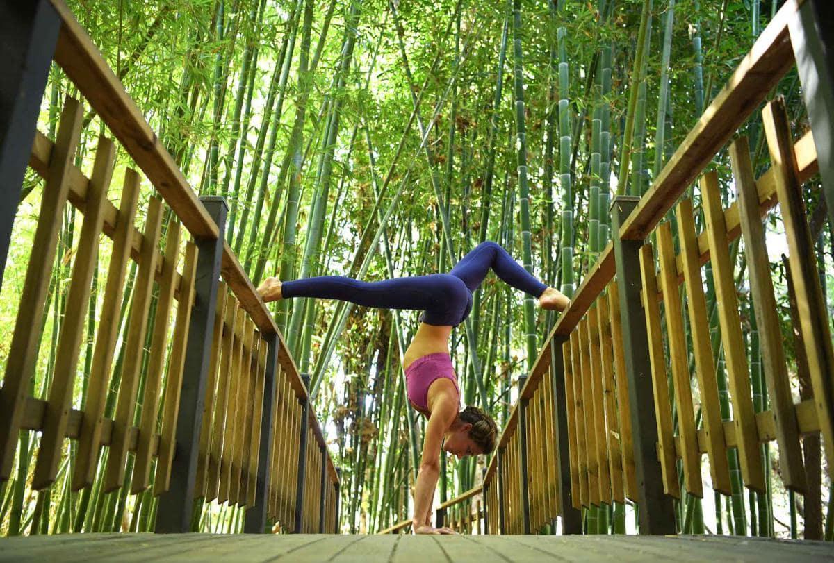 best USA American wellness retreats
