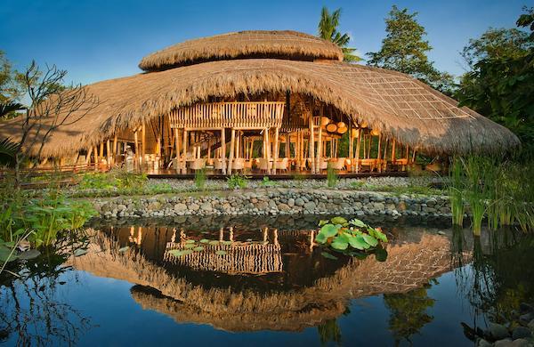 best wellness retreats in bali