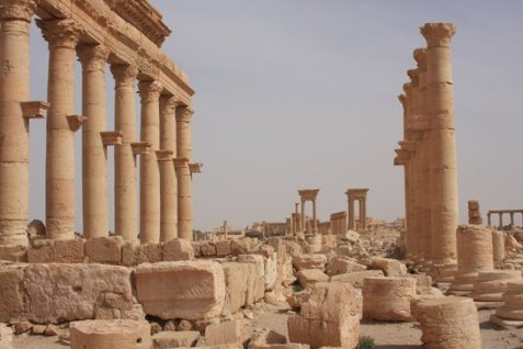 Palmira n. 2
