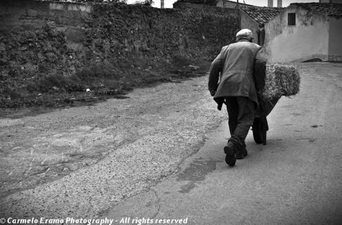 Reportage in Lucania