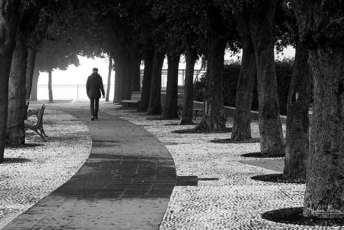 Fotografia di un istante - © Andrea Morico