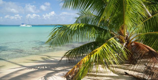 Liveaboard diving in the Caribbean