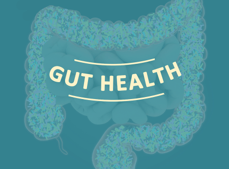 How a Healthy Gut Helps Manage Your Cancer Risk