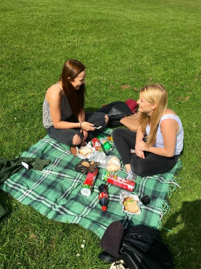 picnic christmas
