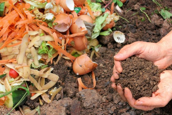 FOOD SUSTAINABILITY – REDUCE FOOD WASTE