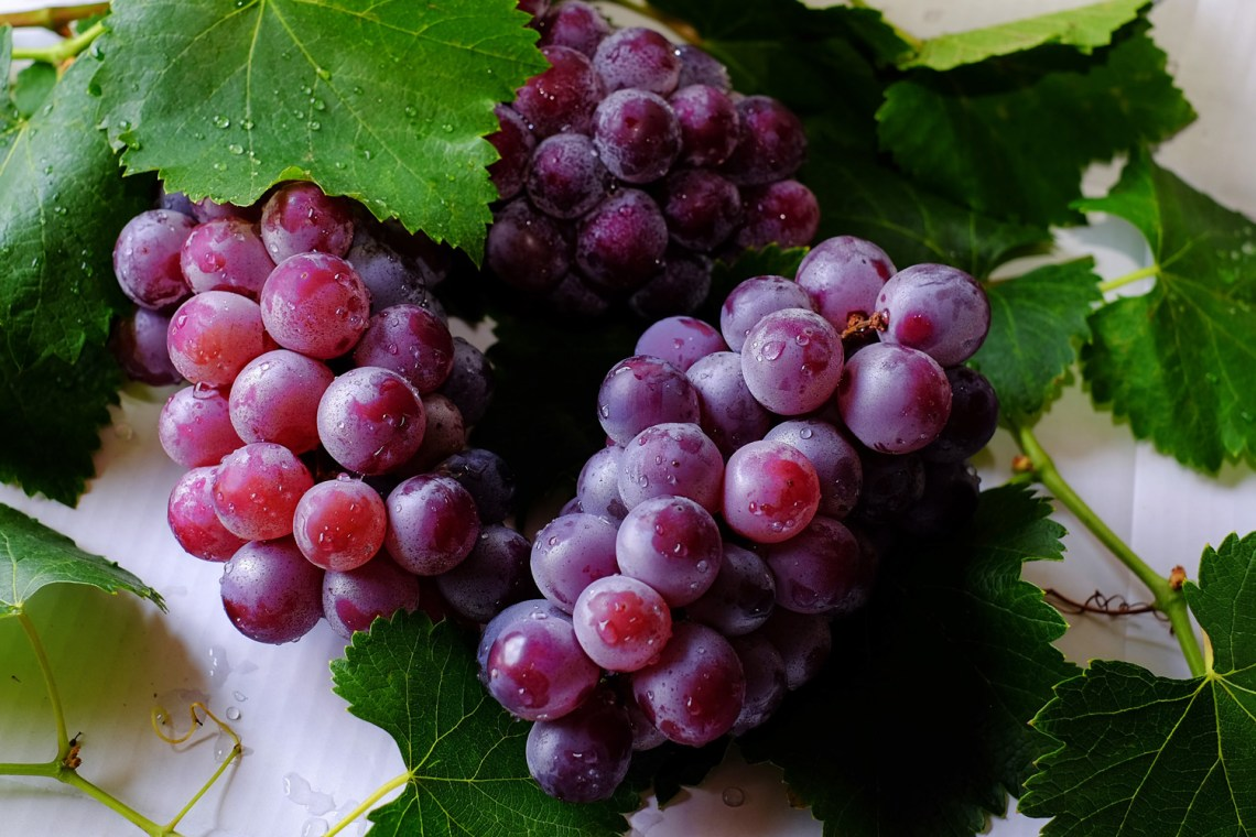 benefici dell'uva - grappolo di uva nera - healthaid magazine