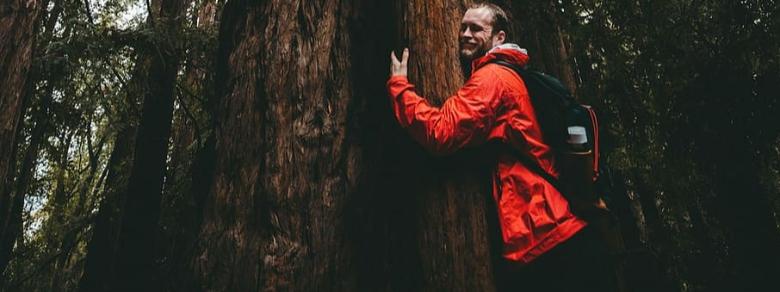 Le nuove proposte di trekking alla riscoperta della natura