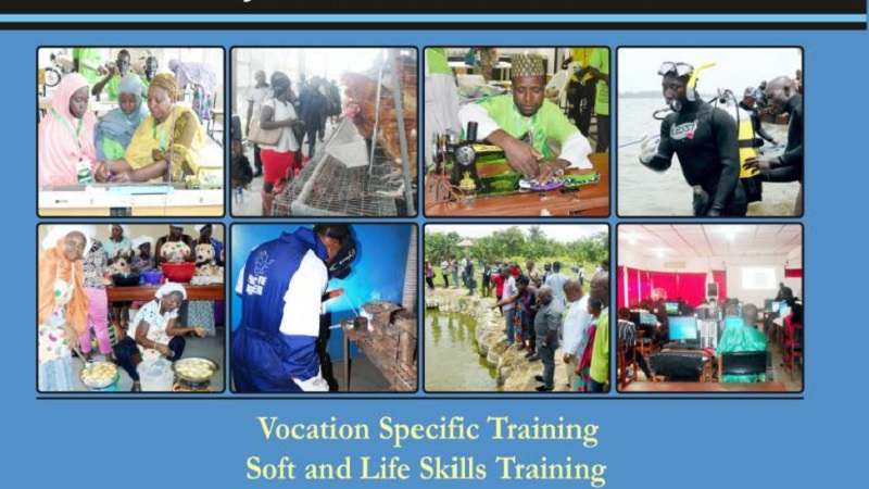 Handbook of Skill Acquisition and Empowerment