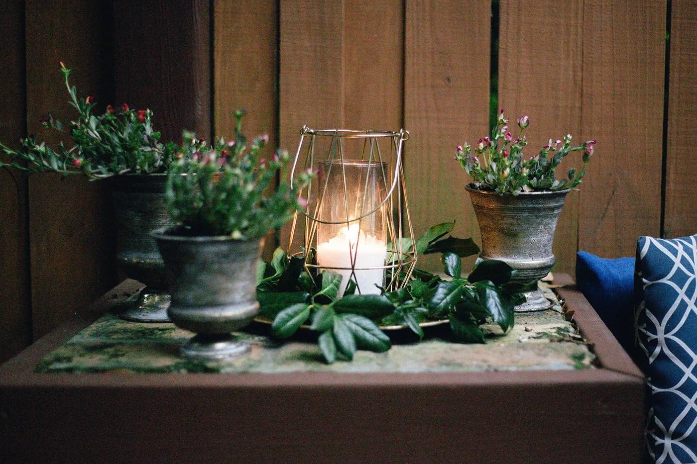 Rimedi naturali contro le zanzare in giardino palazzetti - Rimedi contro le zanzare in giardino ...